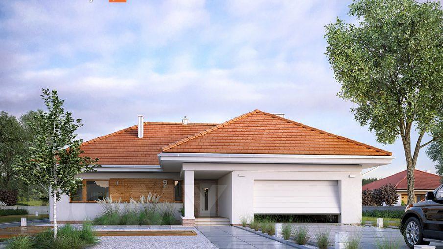 dom parterowy wizualizacja projektu